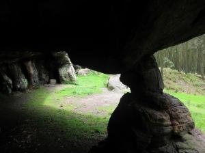 NorthumberlandMay2014 023
